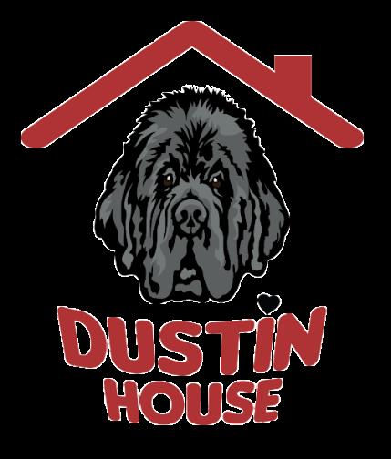 Dustin House | Pensione - Hotel - Asilo per Cani a Bari
